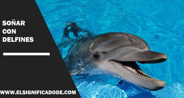 Soñar-con-delfines