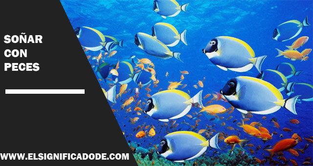Soñar-con-peces