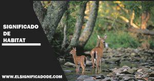 Significado de hábitat