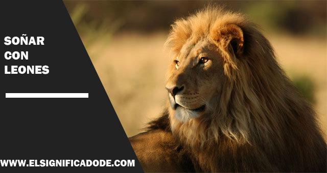 Soñar-con-leones