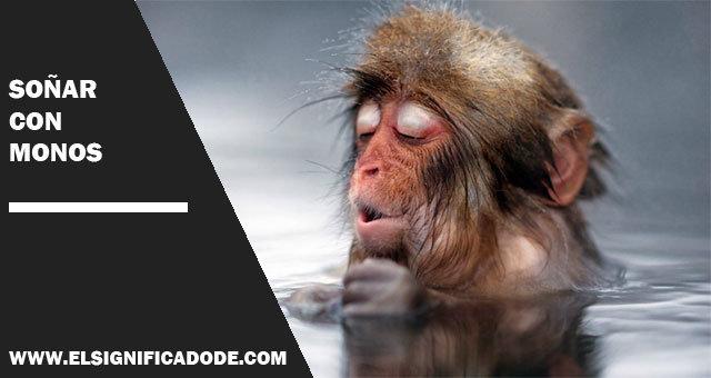 Soñar-con-monos