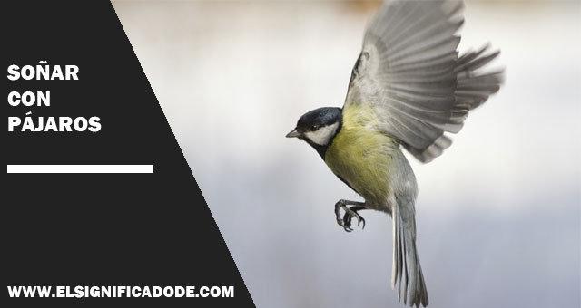 Soñar con pájaros, Significados e Interpretaciones