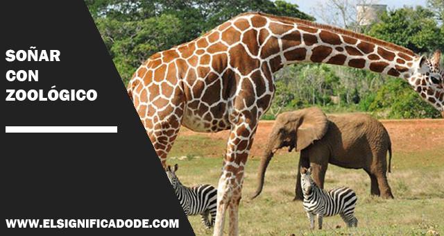 Soñar Con Zoológico Descubre Su Significado